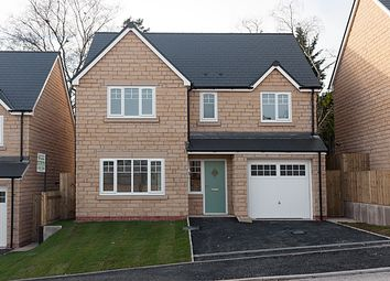 Thumbnail 4 bed detached house for sale in Meadow View, Read, Burnley