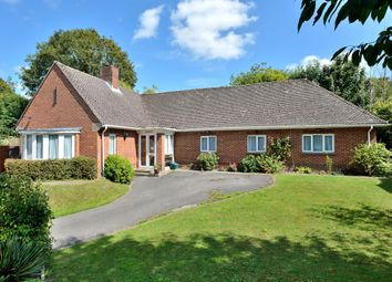 Thumbnail 4 bed detached bungalow for sale in Threeways, Salisbury Road, Shrewton