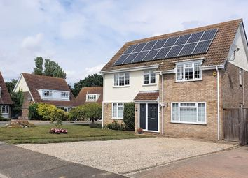 Thumbnail 4 bed detached house to rent in Kirby-Le-Soken, Frinton-On-Sea