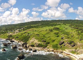 Thumbnail Land for sale in 90 Acres, Foster Hall, St. John