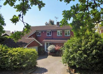 Thumbnail 4 bed detached house for sale in School Hill, Wrecclesham, Farnham