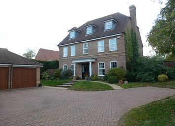 Thumbnail 5 bed property to rent in Chestnut Drive, Stretton Hall, Leicester