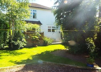 Thumbnail 4 bed detached house to rent in Thatched Cottage Park, Southampton Road, Lyndhurst
