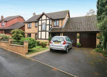 Thumbnail 4 bed detached house for sale in Lower Fern Road, Newton Abbot