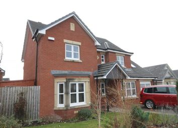 Thumbnail 4 bed detached house to rent in Hamilton Avenue, Mauchline
