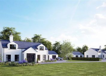 Thumbnail 4 bed detached house for sale in Drumgiven Road, Ballynahinch, Down