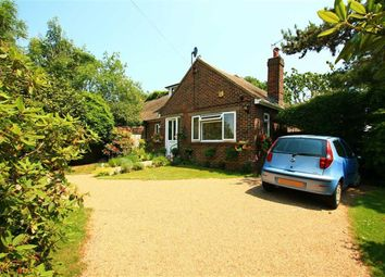 Thumbnail 3 bed semi-detached bungalow for sale in Parkwood Road, Hastings, East Sussex