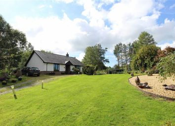 Thumbnail 2 bed detached bungalow for sale in Pontrhydygroes, Ystrad Meurig
