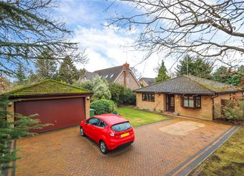 Thumbnail 3 bed detached bungalow for sale in Ferndene, Bricket Wood, St. Albans, Hertfordshire