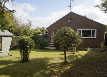 Thumbnail 2 bedroom detached bungalow to rent in Brookside Bar, Brookside, Chesterfield
