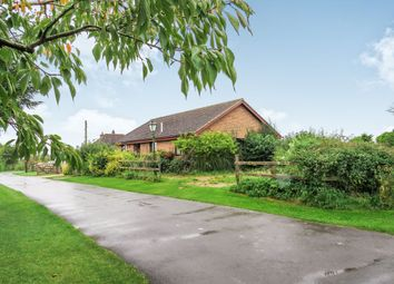 Thumbnail 3 bed detached bungalow for sale in Zion Road, Palestine, Andover