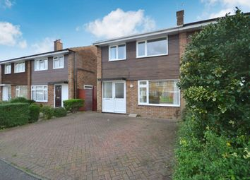 3 bed semi-detached house to rent in Linnet Drive, Chelmsford CM2