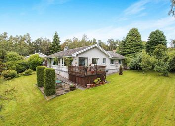 Thumbnail 4 bed bungalow for sale in The Shieling Achandunie, Ardross, Alness