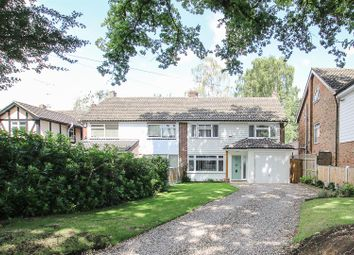Thumbnail 4 bed semi-detached house for sale in Hall Green Lane, Hutton, Brentwood