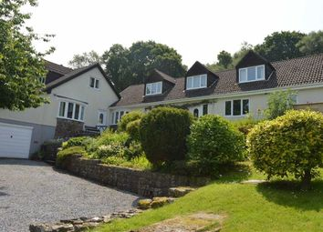 Thumbnail 6 bedroom detached bungalow for sale in Woodlands, The Common, Swansea