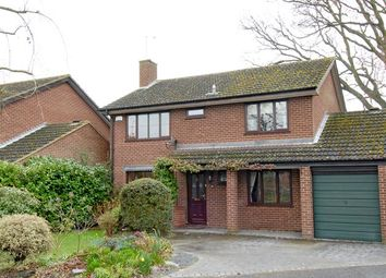 Thumbnail 4 bed detached house to rent in Blenheim Close, Woosehill, Wokingham, Berkshire
