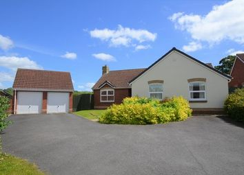 Thumbnail 3 bed detached bungalow for sale in Glanvill Way, Honiton