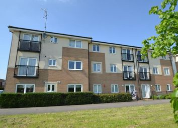 Thumbnail 2 bed flat for sale in Queensland Crescent, Chelmsford, Essex