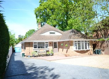 Thumbnail 3 bed detached house for sale in Nine Mile Ride, Finchampstead, Wokingham
