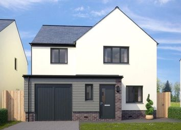 Thumbnail 4 bed detached house for sale in Barnard, Paignton, Devon