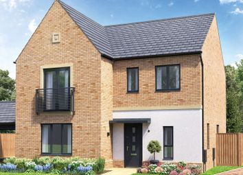 Thumbnail 3 bed detached house for sale in Wintringham, Cambridge Road, St. Neots
