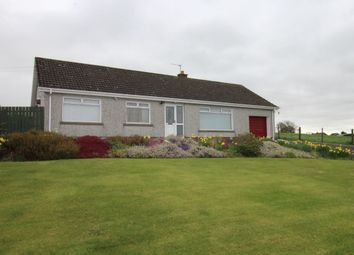 Thumbnail 3 bedroom bungalow to rent in Ballymullan Road, Lisburn