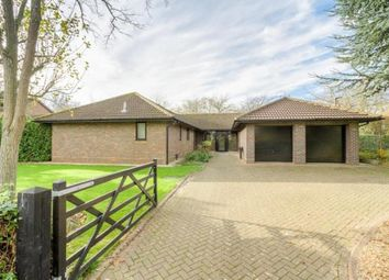 Thumbnail 5 bedroom bungalow for sale in Millhayes, Great Linford, Milton Keynes