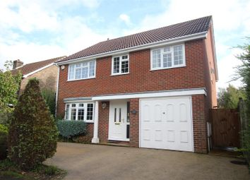Thumbnail 4 bed detached house for sale in Sheppey Walk, Hailsham
