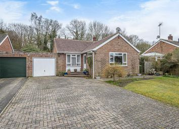Thumbnail 3 bed detached bungalow for sale in Hermitage, Berkshire