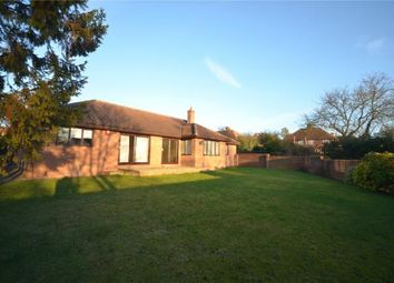 Thumbnail 4 bed detached bungalow to rent in Symonds Lane, Linton, Cambridge, Cambs