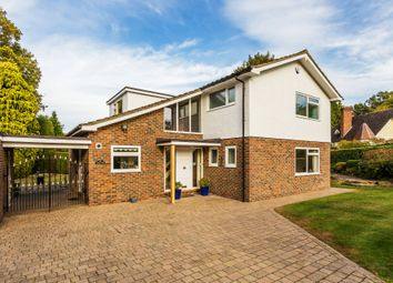 Thumbnail 4 bed detached house to rent in Hillcrest, Dormans Park, East Grinstead