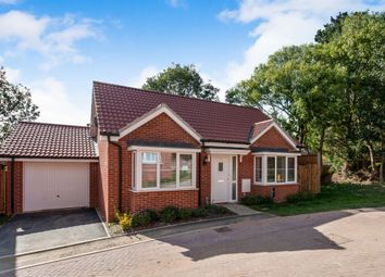 Thumbnail 2 bed detached bungalow for sale in Wagtail Drive, Stowmarket
