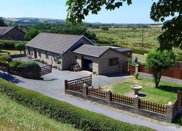 Thumbnail 4 bedroom bungalow for sale in Machynlleth, Ceredigion