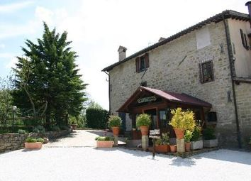 Thumbnail Hotel/guest house for sale in Grand Estate & B&B, Gubbio, Umbria