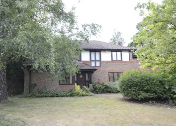 Thumbnail 4 bed property to rent in The Burlings, Ascot
