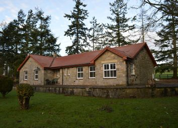 Thumbnail 3 bed detached bungalow to rent in Caistron, Rothbury