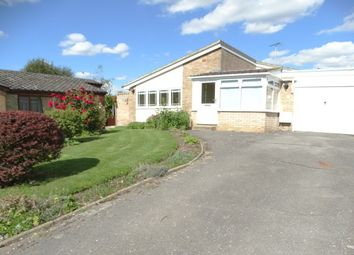 Thumbnail 2 bedroom bungalow to rent in Leigh Drive, Wickham Bishops, Witham