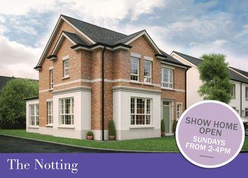 Thumbnail 4 bed detached house for sale in Dillon/Harlow Green, Meeting Street, Moira
