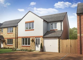 "Thumbnail 4 bedroom detached house for sale in ""The Leith"" at Lanton Road, Falkirk"