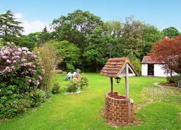 Thumbnail 2 bed detached house for sale in Walliswood, Dorking