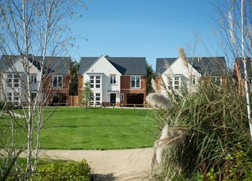 Thumbnail 4 bed detached house for sale in Rennoldson Green, St John's, Chelmsford