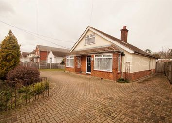 Thumbnail 3 bed bungalow for sale in Bramfield, Clacton Road, Elmstead Market, Colchester
