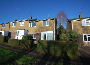 Thumbnail 4 bed property to rent in Raven Court, Hatfield