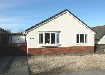 Thumbnail 3 bed detached bungalow to rent in Y Nant, Rhewl, Holywell, 9Qu.