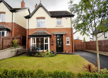 Thumbnail 3 bed detached house for sale in Coopers Mill Avenue, Dundonald