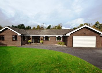 Thumbnail 3 bed detached bungalow for sale in Wren View, Loggerheads, Market Drayton
