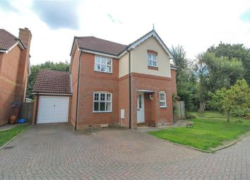 Thumbnail 4 bed detached house to rent in Barker Close, Arborfield, Reading