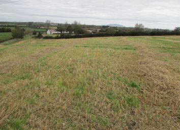 Thumbnail Property for sale in Coolcreedon, Louth, Louth