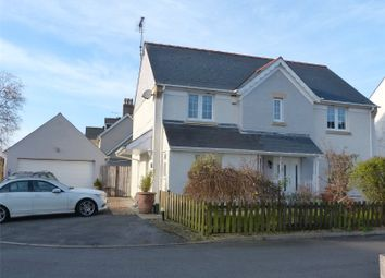Thumbnail 4 bed detached house for sale in Crunwere Close, Llanteg, Narberth