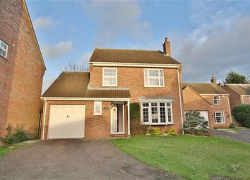 Thumbnail 4 bedroom detached house to rent in Hallwyck Gardens, Newmarket
